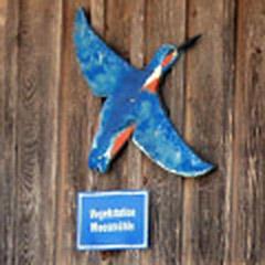 Vogelstation »Moosmühle« Benediktbeuern