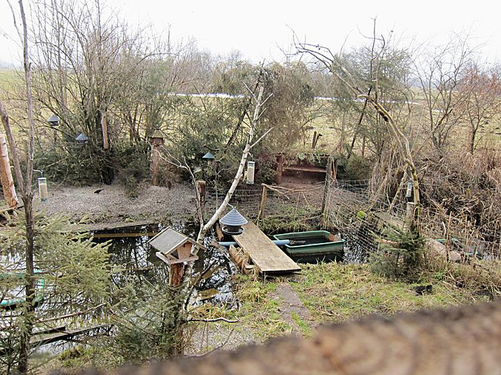 vogelscheune2_2011-02-19_1646