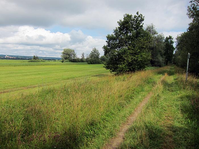 dammweg, august 2012
