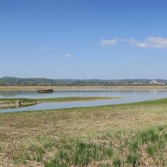 Vogelfreistätte Ammersee-Südufer
