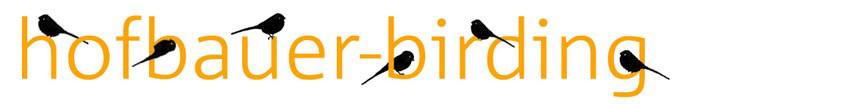 Birding mit Waltraud Hofbauer