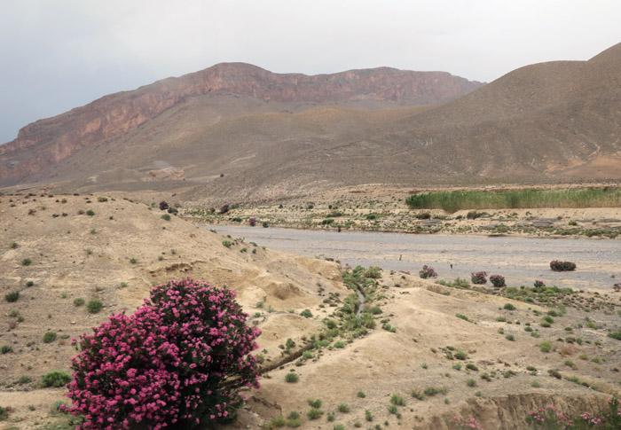 51_morocco_may17_6783