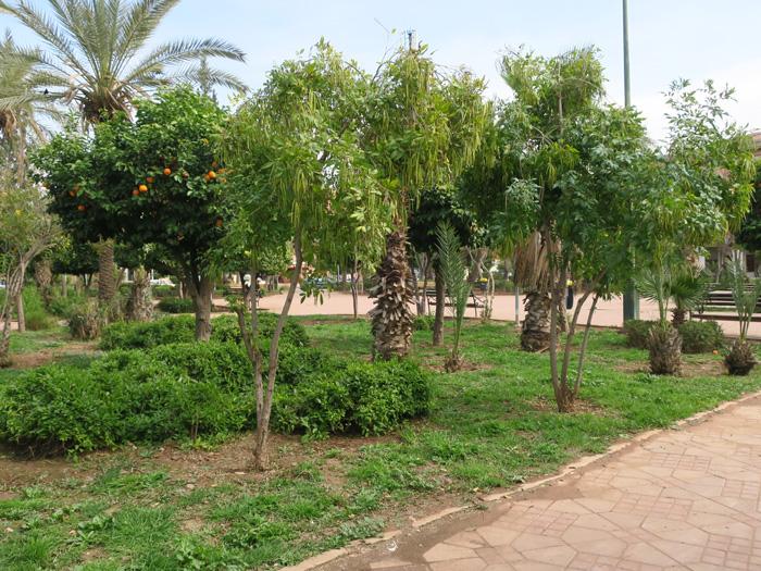 03_park_allal-al-fassi_marrakesh_febr17_3257