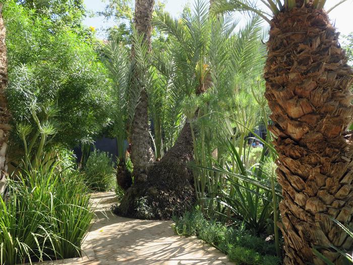 10_le-jardin-secret-marrakesh_okt17_2333