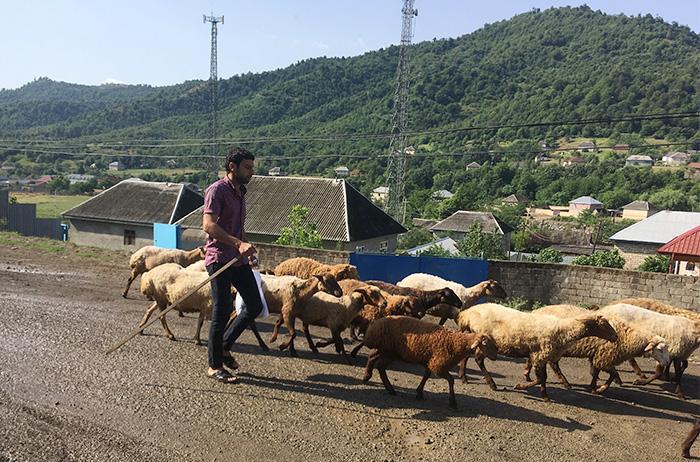 06_talisch-gebirge_aserbaidschan_2018-06-05_0943
