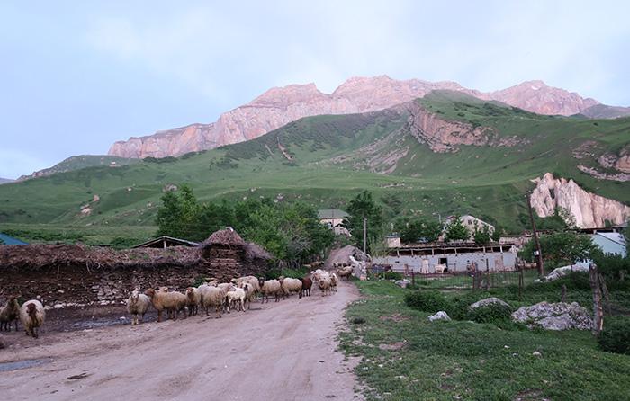 01_laza_aserbaidschan_5uhr_2018-05-29_5602