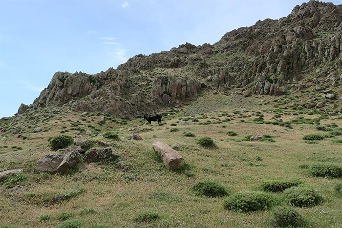13_piraesora_Talysch-Gebirge_Aserbaidschan_2018-06-03_7790