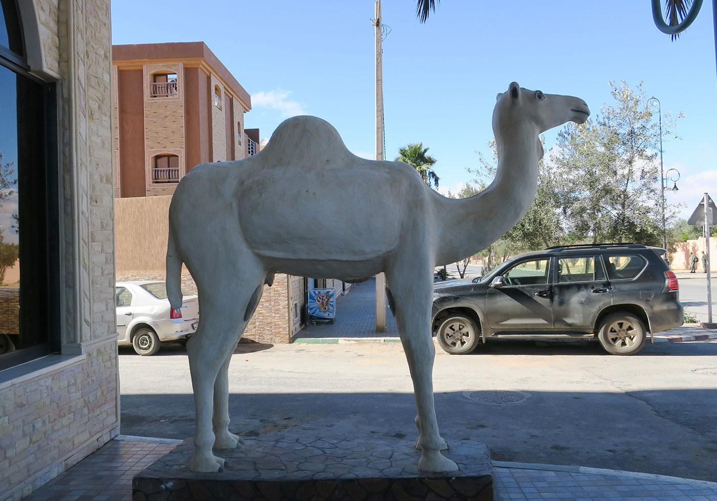 10_guelmim_marokko_2018-11-26_4467