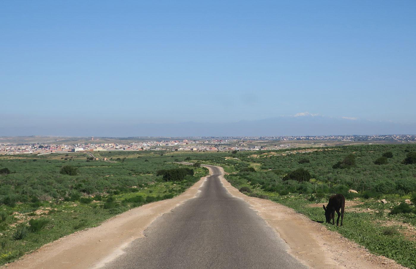 10_marokko_2018-11-28_5187